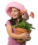 Marguerites de rose de jeune fille photo libre de droits