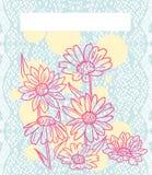 Marguerites roses au-dessus de dentelle bleue Photographie stock