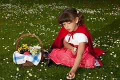 Marguerites rouges de cueillette de capot d'équitation Photo stock