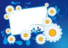 Marguerites sur un fond bleu Photographie stock