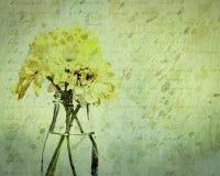 Marguerites texturisées sales de chrysanthème dans une bouteille en verre image stock