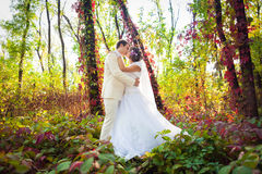 Marié et jeune mariée Images libres de droits