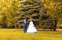 Marié et jeune mariée en parc d'automne Photos stock