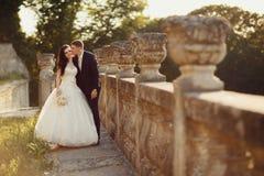 Marié et jeune mariée marchant en nature d'or d'automne Images stock