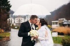 Marié et jeune mariée marchant en parc leur jour du mariage Temps d'automne Rair Parapluie de couples photographie stock libre de droits