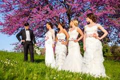 Marié sélectionnant une jeune mariée image libre de droits