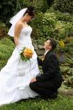 Marié sur des genoux Photo libre de droits