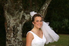 Mariée à être Images stock