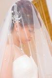 Mariée à cacher dans le voile Photos stock