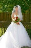 Mariée images stock