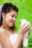 Mariée avec la colombe image stock
