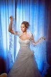 Mariée avec le voile Image libre de droits