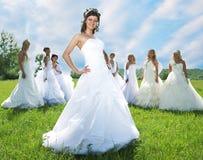 Mariée d'amorce avec des groupes de mariée Photographie stock