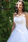 Mariée dans la verticale de robe images libres de droits