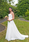 Mariée dans le jardin images libres de droits