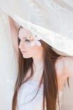 Mariée de beauté Photographie stock libre de droits