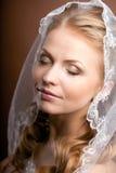 Mariée de luxe avec la coiffure de mariage images stock