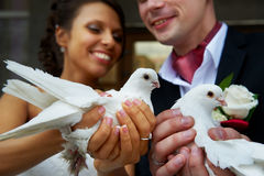 Mariée et marié avec des pigeons dans des ses mains Photographie stock