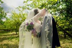 Mariée et marié dans des baisers de stationnement Photo libre de droits