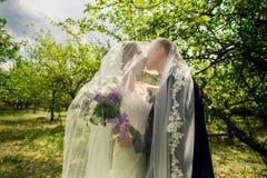 Mariée et marié dans des baisers de stationnement Image libre de droits