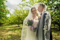 Mariée et marié dans des baisers de stationnement Photo stock