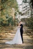 Mariée et marié dans des baisers de stationnement les jeunes mariés de nouveaux mariés de couples à un mariage dans la forêt de v Photos stock