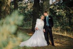 Mariée et marié dans des baisers de stationnement les jeunes mariés de nouveaux mariés de couples à un mariage dans la forêt de v Photo libre de droits