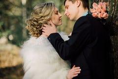 Mariée et marié dans des baisers de stationnement les jeunes mariés de nouveaux mariés de couples à un mariage dans la forêt de v Image libre de droits