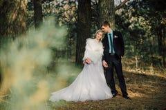 Mariée et marié dans des baisers de stationnement les jeunes mariés de nouveaux mariés de couples à un mariage dans la forêt de v Photographie stock libre de droits