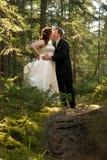 Mariée et marié embrassant dans la forêt Images stock