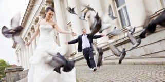 Mariée et marié marchant derrière des colombes Images libres de droits