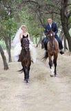 Mariée et marié sur les chevaux photo libre de droits