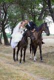 Mariée et marié sur les chevaux Photographie stock libre de droits
