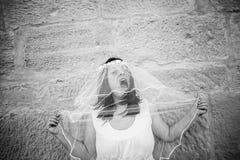 mariée folle Photos stock