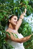 Mariée heureuse dans la robe de mariage et le branchement de l'arbre Photos libres de droits