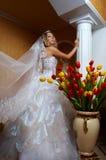 Mariée majestueuse photo stock