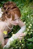 Mariée sur l'herbe image stock