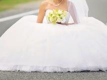 Mariée sur la route Photo stock