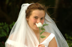 Mariée timide Images libres de droits