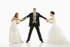 Mariées combattant au-dessus du marié. Photos libres de droits