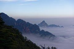 Mari delle montagne della montagna-Jinggang dell'nuvola-azalea Immagine Stock