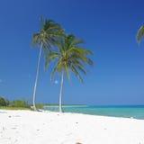 Maria la Gorda Beach Royalty Free Stock Image