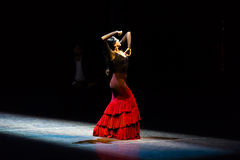 Maria Pages, danseur espagnol de flamenco Photo libre de droits