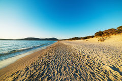 Maria Pia shoreline at sunset royalty free stock photography