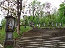 Maria Radna Franciscan Monastery - Rumänien fotografering för bildbyråer