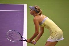 Maria Sharapova royalty free stock image
