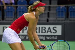 Maria Sharapova. During Fed Cup 2015 in Kraków, Poland stock photography