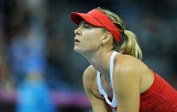 Maria Sharapova 2 Royalty Free Stock Image