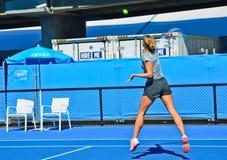 Maria Sharapova practicing Royalty Free Stock Images