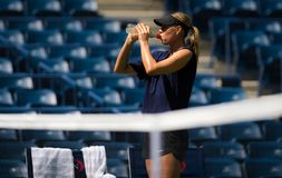 Maria Sharapova royalty free stock photo